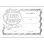 Silver Award Metallic - A6