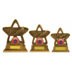 Swimming Star Trophy