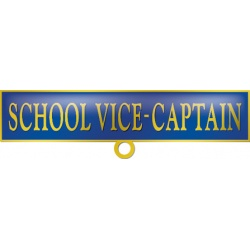 School Vice-Captain