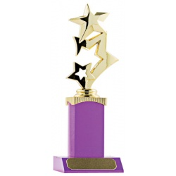 Stars on Block Trophy - Magenta